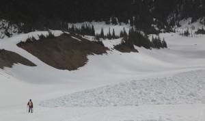 Лавинные выносы в Glacier Basin